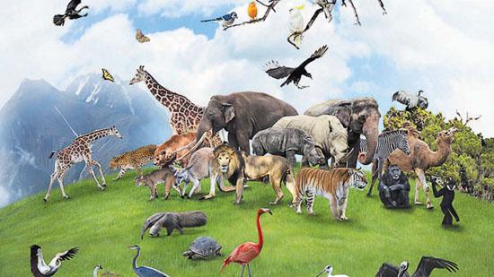На Земле начался шестой период массового вымирания