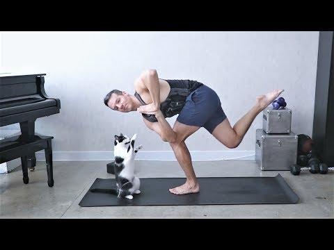 КОТОЙОГА | ЙОГА ЧЕЛЛЕНДЖ С КОТАМИ | Koshkina YOGA CHALLENGE | Cat Yoga Challenge