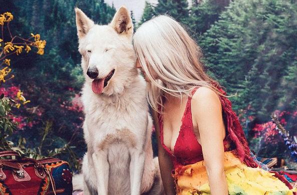 Спасенным животным подарили фотосессию с красивыми девушками