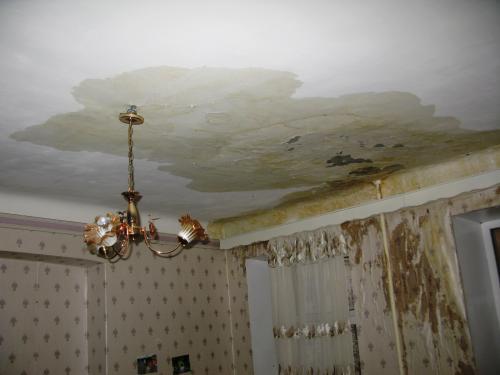 черточки что делать если соседи затопили потолок было довольно
