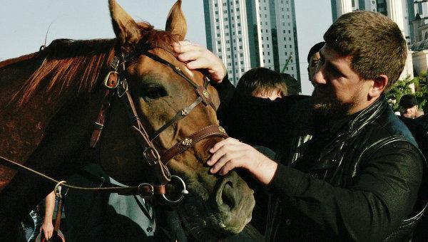 Кадыров раскритиковал власти Германии из-за ущемления прав его лошади