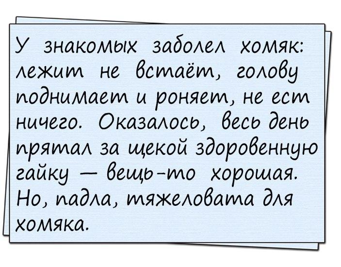 Анекдоты картинки приколы с надписями, аукцион рубля