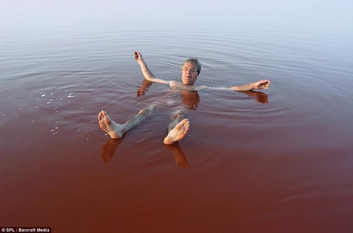 Клубничное озеро существует красивые фотографии
