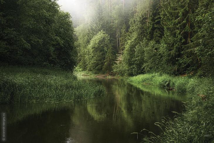 Фото Сергея Странника - июнь 3