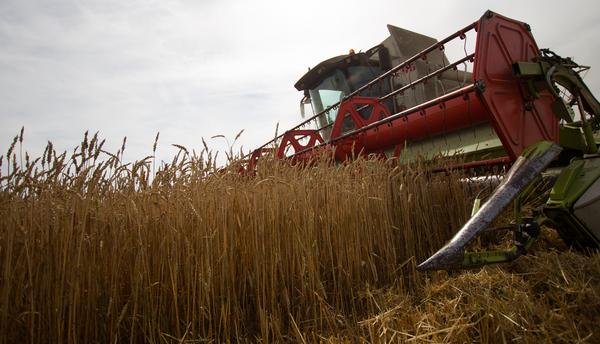 Турция запретила сельскохозя…