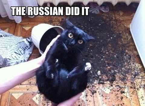 Это сделали русские: ироничный флешмоб высмеивает политиков-русофобов