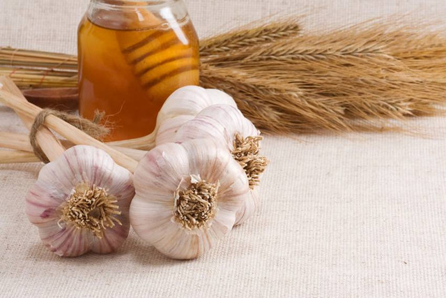 Оздоровление организма с помощью мёда и чеснока
