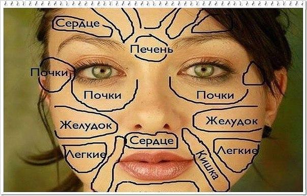 ЧТО ГОВОРИТ КИТАЙСКАЯ «КАРТА ЛИЦА» О ВАШЕМ ЗДОРОВЬЕ