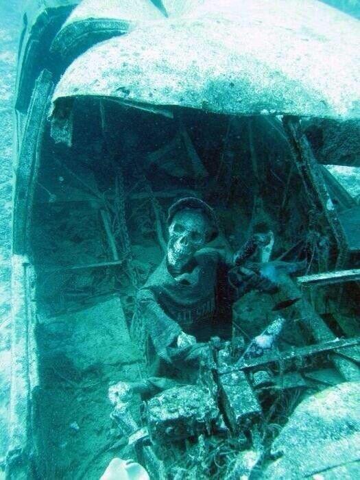 Очень много затонувших самолетов - от совсем старых, до современных жизнь, затонувшие, под водой, страшно, техника, удивительно