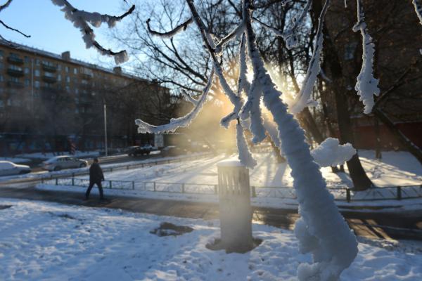 Москву ожидает серьезное похолодание: синоптики рассказали о морозах на Старый Новый год