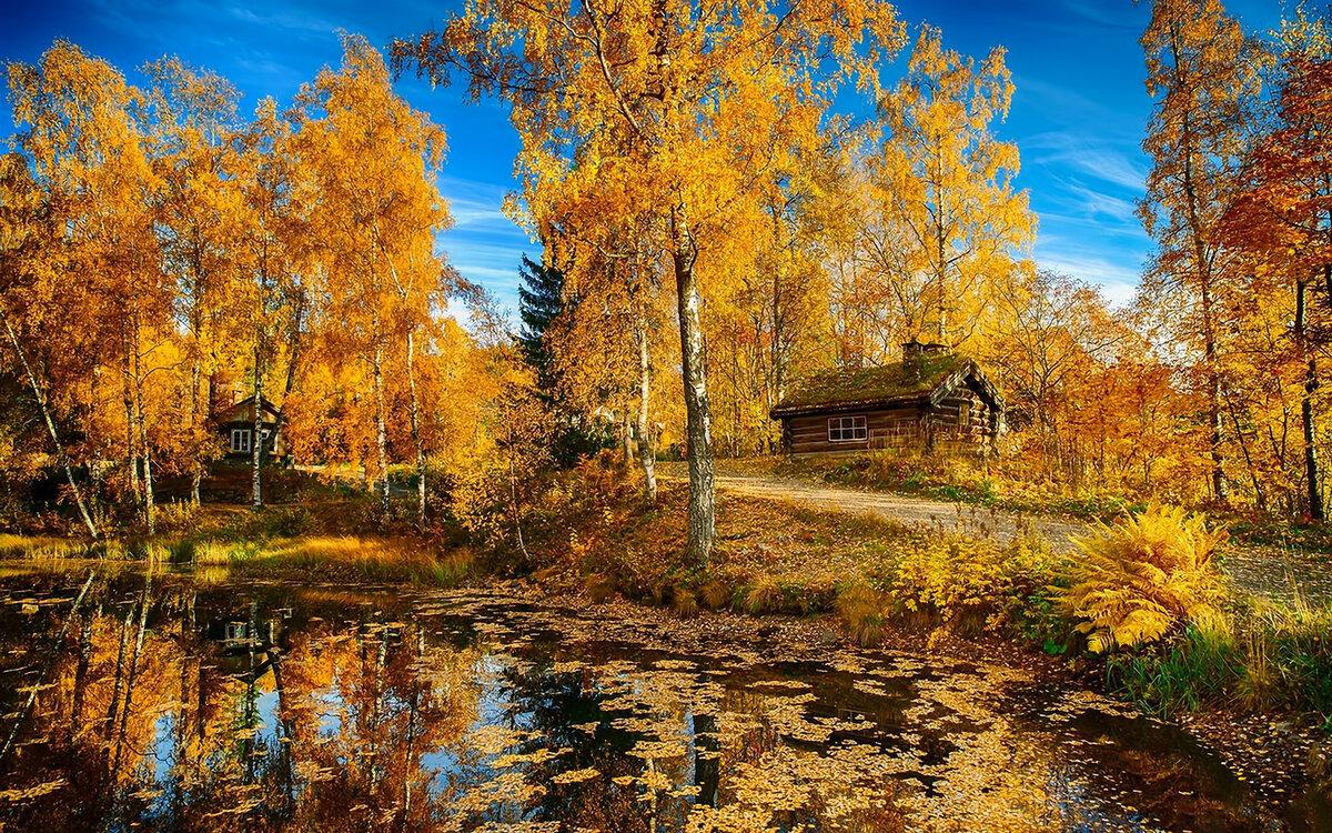 фотографии осеннего пейзажа конечно