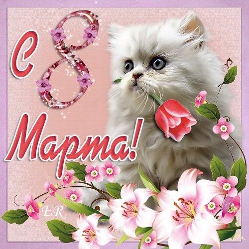 с восьмым марта картинки с котятами вас есть возможность