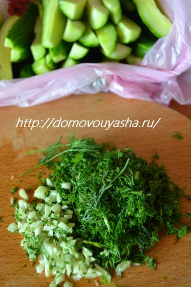 Малосольные огурцы в пакете рецепт быстрого приготовления