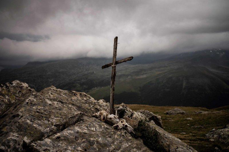 «Он появлялся каждый вечер в течение недели возле моего загона, – вспоминает пастух. – Когда погибла моя первая овца, я почувствовал, что провалился, что не выполнил свой долг» Альпы, жизнь, пастух, работа