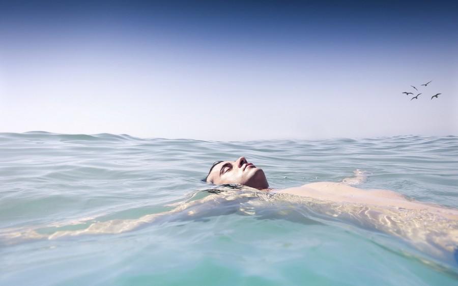 Самый смелый побег из СССР: океанолог спрыгнул за борт и проплыл 100 километров за 2 дня Культура