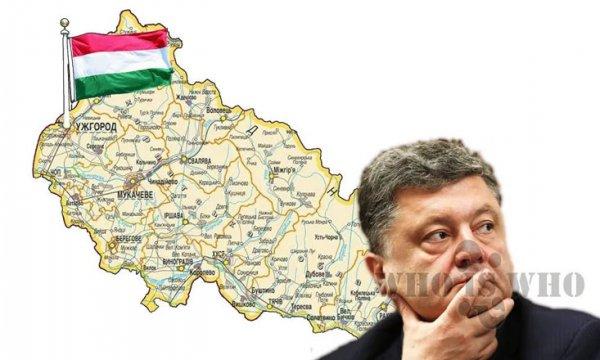 Закарпатские венгры требуют расширенной автономии. Киев отвечает репрессиями