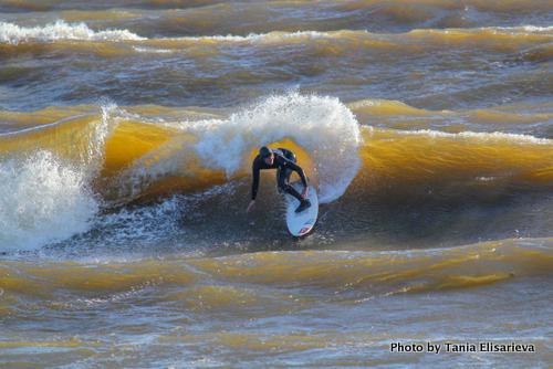 В Зеленоградске пройдет фестиваль сёрфинг-культуры Locals Only