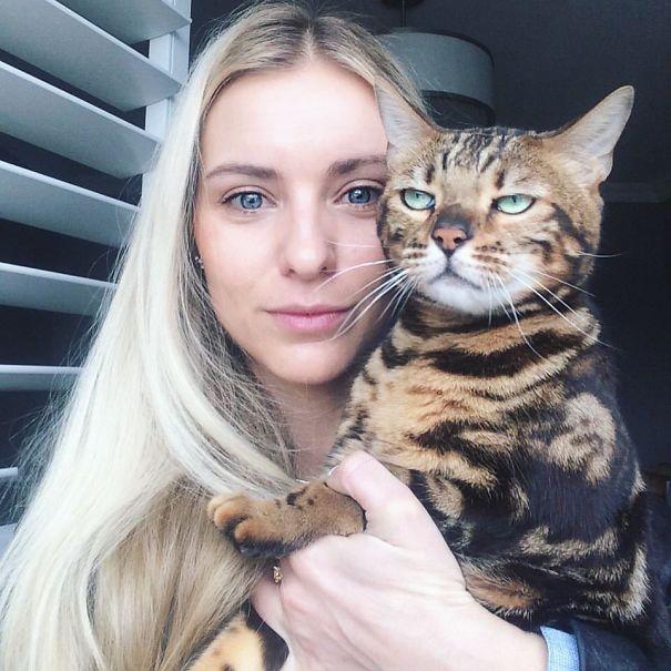 Коты, которые ненавидят селфи с людьми