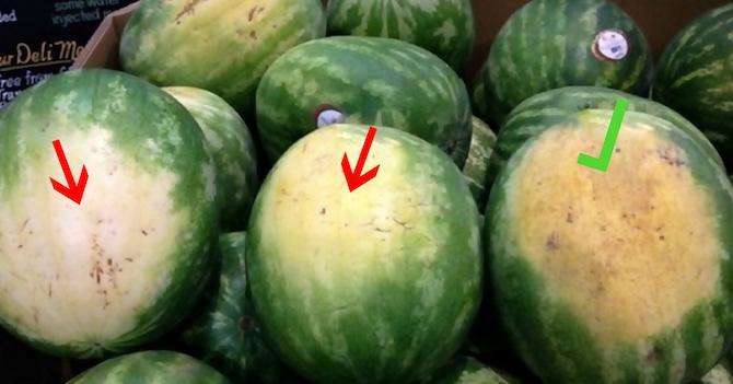 Вот как правильно выбирать арбуз: этому трюку меня научил один фермер!
