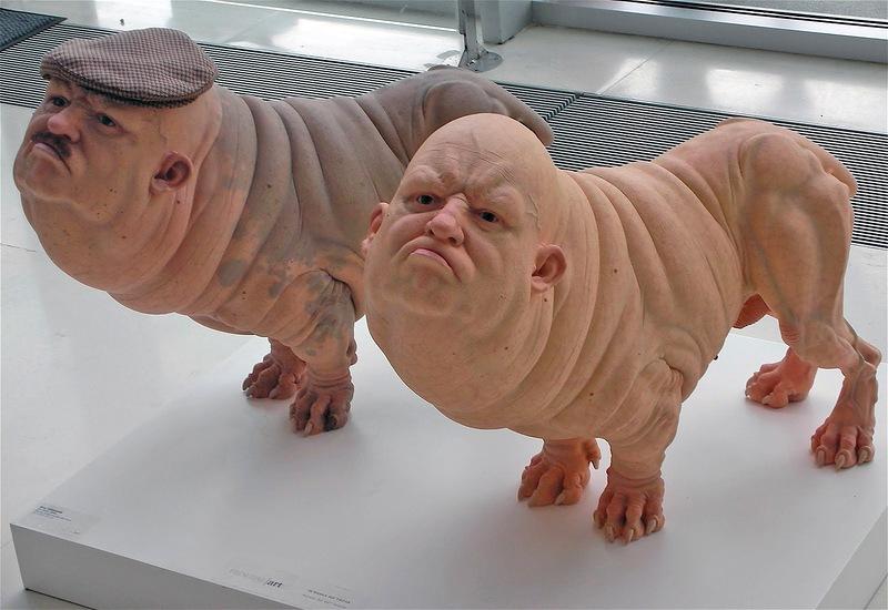 США: Гибрид свиньи и человек…