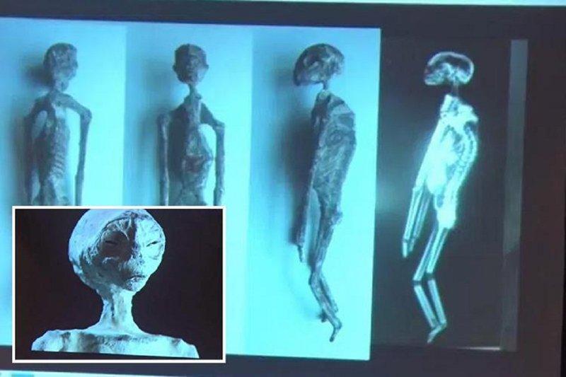 В Перу нашли останки пришельцев