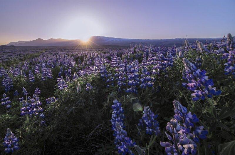 28 снимков изИсландии отвлюбленного внее фотографа виза,заграница,история,мир,отпуск,путешествия,страны,тур,туризм