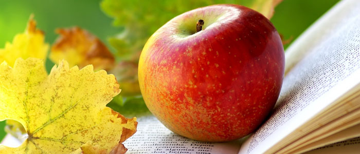Жук и яблоко