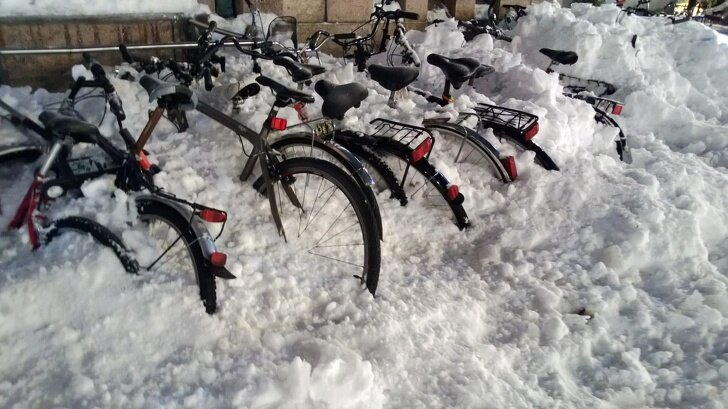 Финские школьники ездят на уроки на велосипедах в любую погоду страны, факты, это интересно