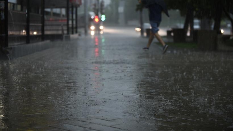 Ливневые дожди прогнозируются в Москве 26 и 28 апреля