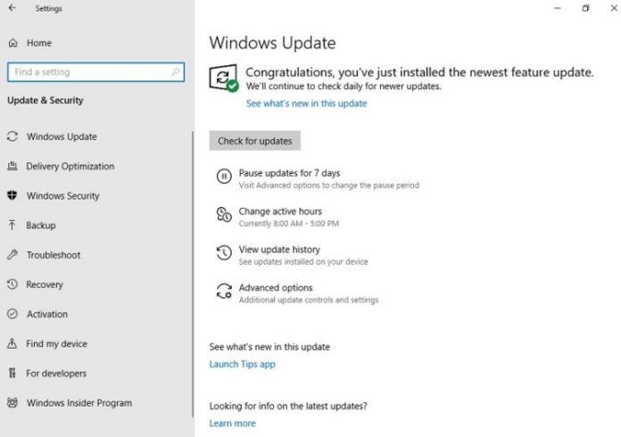 В Windows 10 появилась долгожданная функция, о которой мечтали все пользователи