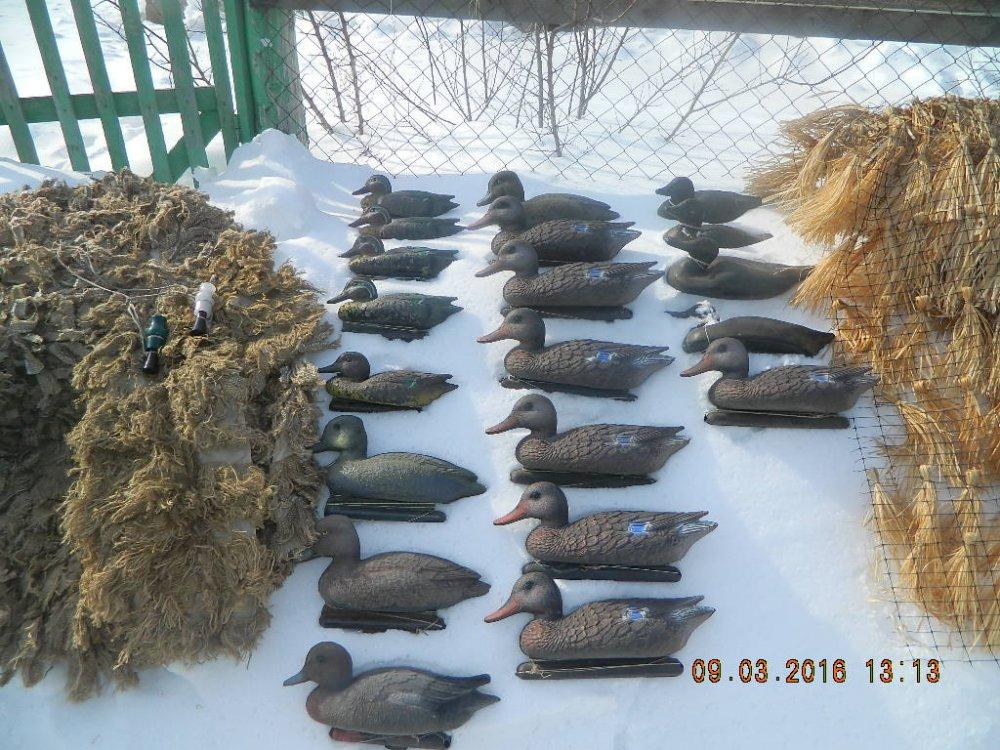 Фотоотчет о весенних охотах