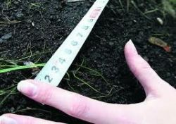 Как расширить свой участок за счет пустующей земли?