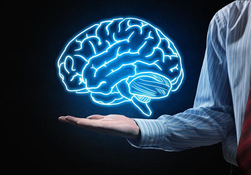 9 удивительных фактов о человеческом мозге