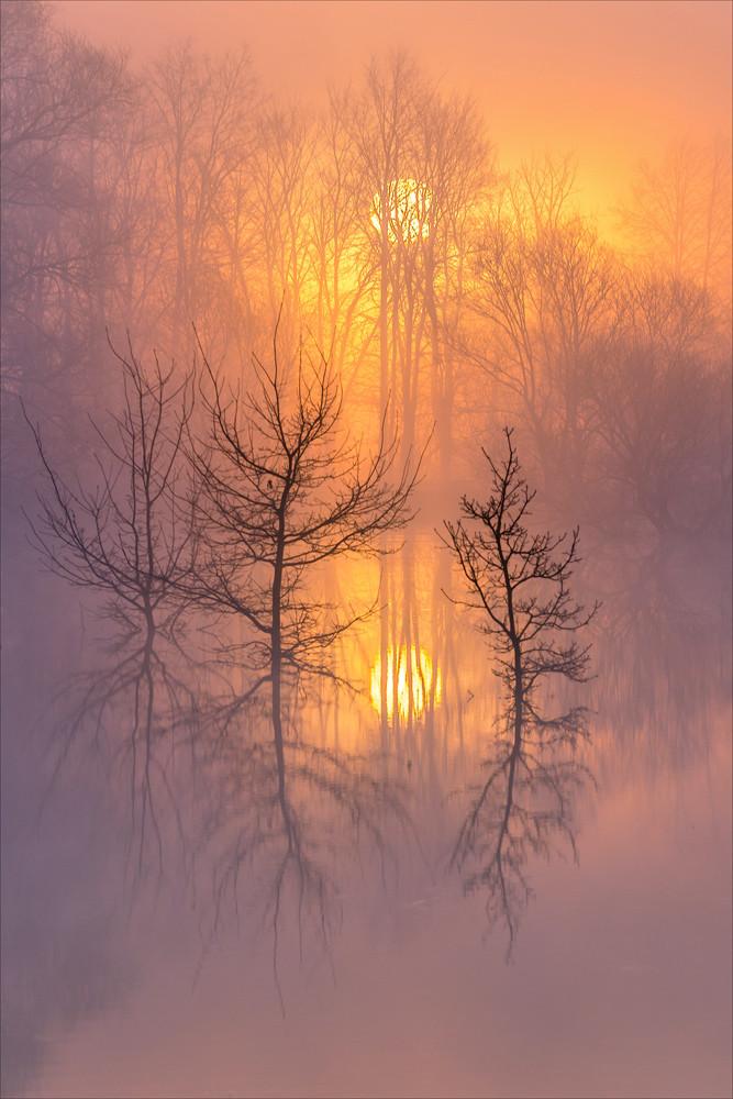 Прекрасные фотографии туманных русских пейзажей