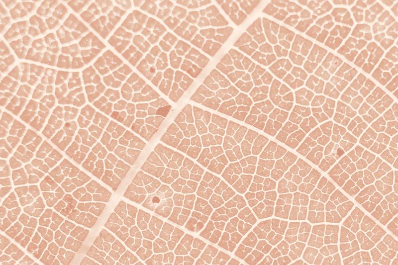 Растяжки на коже: как с ними бороться