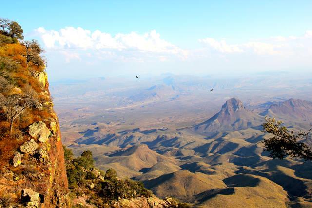 Самые большие пустыни в мире интересное,мир,природа,пустыни