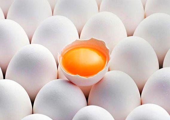 5 самых распространенных мифов о куриных яйцах