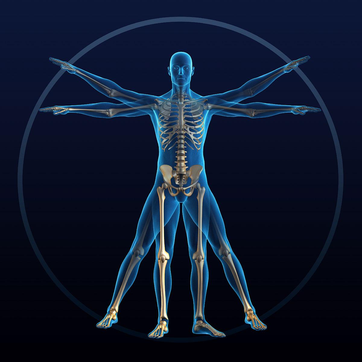 Медицина: железный человек медицина,органы,человек
