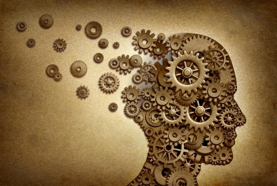 Поняв, как работает мозг, вы…