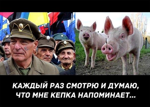 http://mtdata.ru/u1/photo3838/20605247940-0/original.jpg