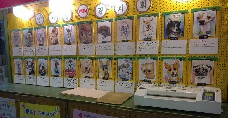 В Южной Корее популярно делать шаржи не на людей, а на их питомцев страны, факты, это интересно