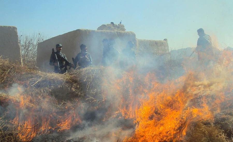 Афганистан Год спецоперации: 2008Суммарный вес конфиската:92 тонныСостав:опиум С 2001 года на территории Афганистана ведется негласная «война против наркотиков». Год начала был самым успешным годом операции: за несколько месяцев солдаты армии США уничтожили 92 тонны опиума.