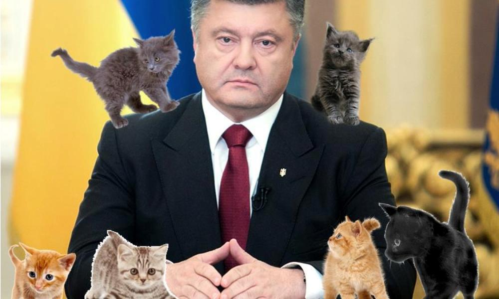 Коты-танкисты расскажут детям про главного врага