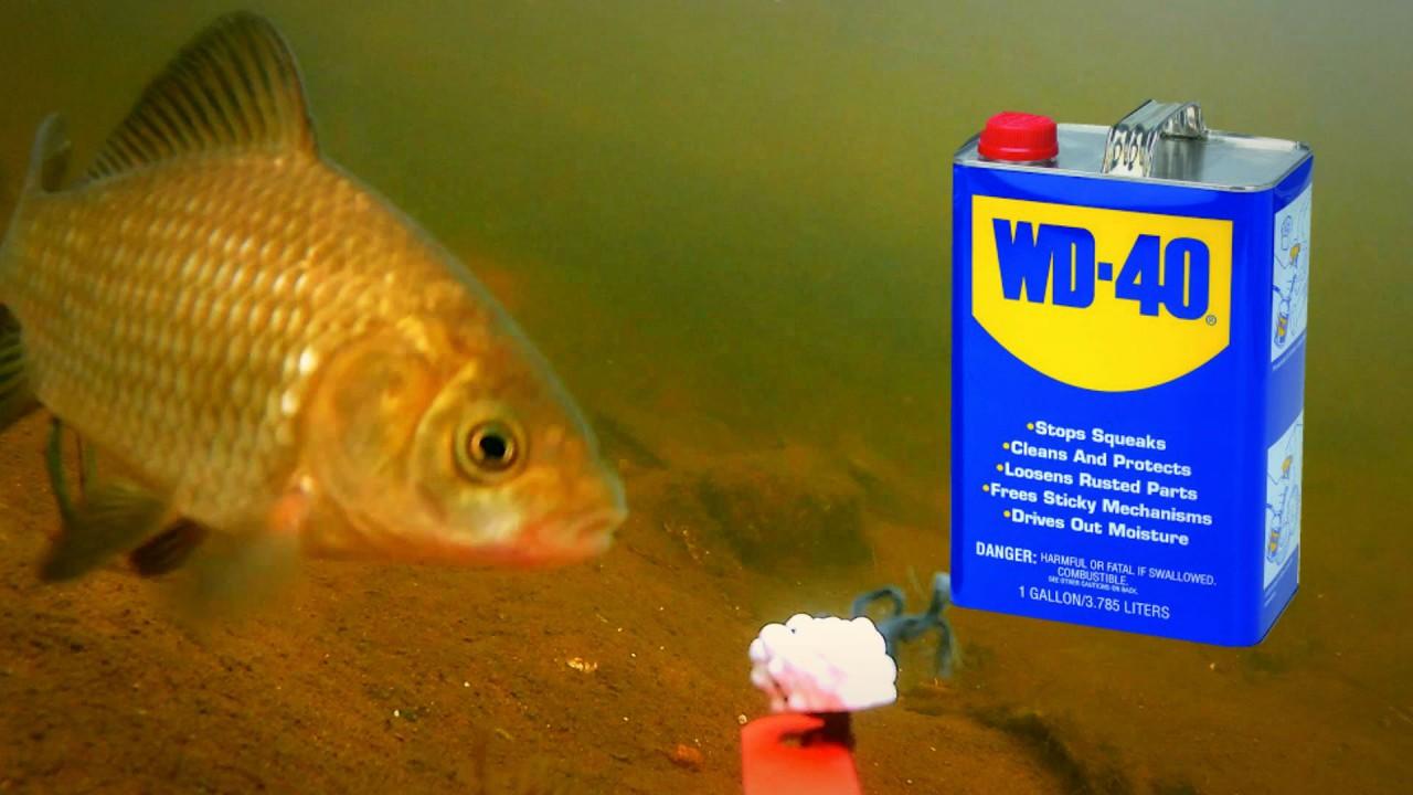 WD-40 на рыбалке! 100% РАЗВОД!!! Подводное видео