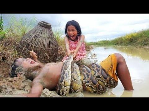Страшно !! Три Маленьких Ребенка Ловят Чрезвычайно Большую Змею Во Время Рыбалки (Часть 2)