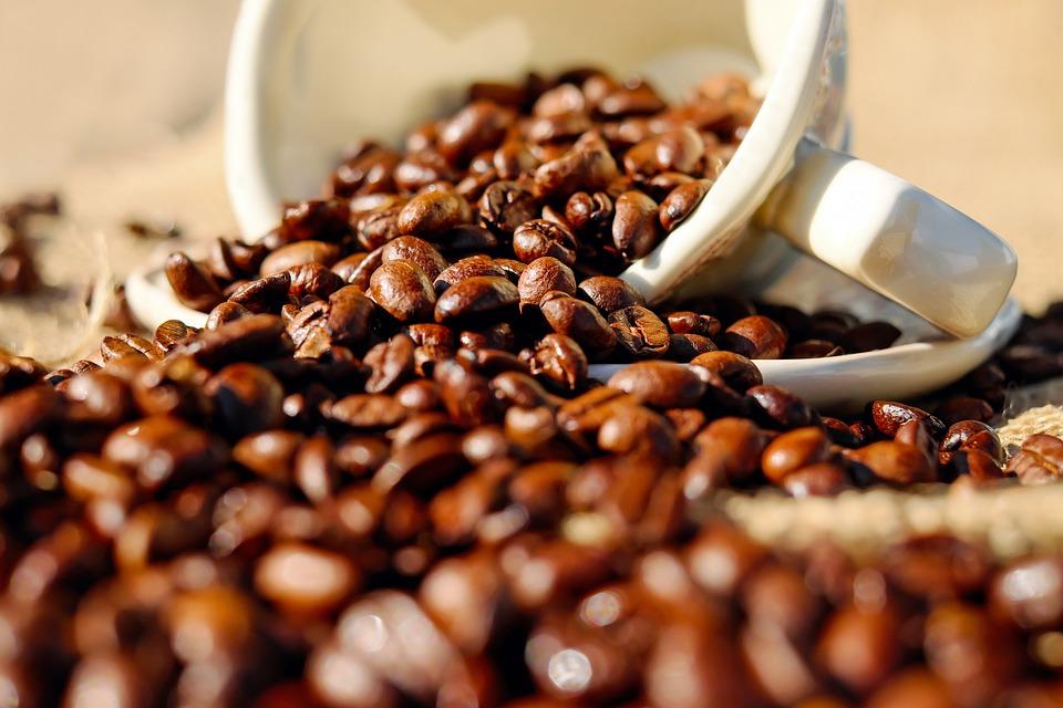 GS Coffeeshop в центре Калининграда временно приостанавливает работу