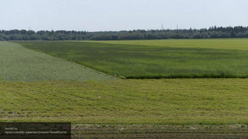Россияне смогут узаконить земли, используемые более 15 лет