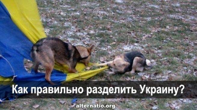 Как правильно разделить Украину?