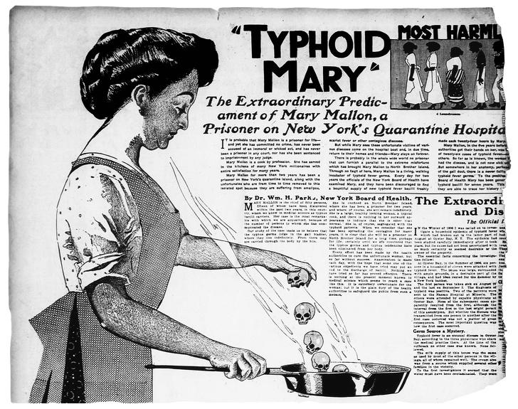 История кухарки, которая заразила смертельной инфекцией более 50человек, асама осталась здоровой