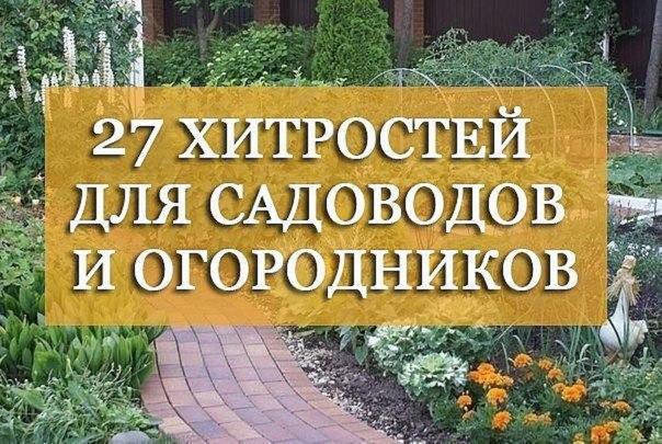 27 хитростей для садоводов и огородников